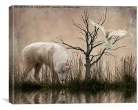 Woodland Wolf reflected, Canvas Print