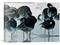 Exotic Flamingos, Canvas Print