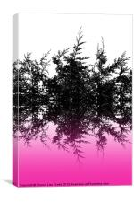 Conifer cerise, Canvas Print