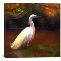 Egret painting, Canvas Print