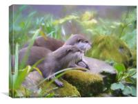 Otter duo, Canvas Print