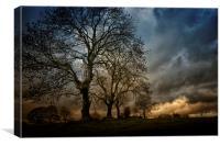 Trees near Glenoe, Canvas Print