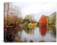 Autumn at Wisley Gardens., Canvas Print