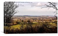 Wombourne view