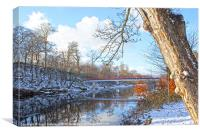 River Ayr, Canvas Print