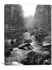 Betys Coed(Excuse my Welsh), Canvas Print