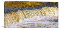 Flow Of Gold, Canvas Print