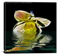 Watery Petals, Canvas Print