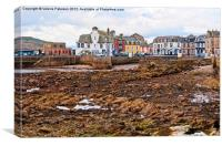 Tides Out In Millport, Canvas Print
