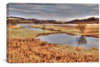 View Across Lochwinnoch, Canvas Print