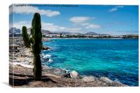 Lanzarote Shore, Canvas Print
