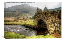 Butterbridge, Canvas Print