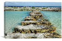 Steps to Sea, Canvas Print