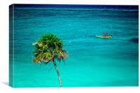 Palm Tree Crossing , Canvas Print