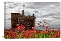 Wild Flowers at Portencross , Canvas Print