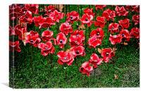 Ceramic Poppies , Canvas Print