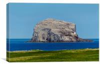 Bass Rock, Canvas Print