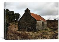 Forgotten House , Ireland, Canvas Print