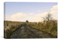 The Quiet Place, Canvas Print