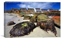 Iona, Scotland, Canvas Print