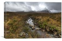 Stream, Rannoch Moor, Canvas Print