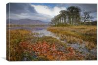 Autumn leaves, Loch Awe, Canvas Print