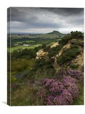 Roseberry Topping and Heather, Cleveland Hills, Canvas Print