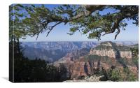 Grand Canyon from Bright Angel Trail, Canvas Print
