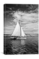 Traditional boat, Coll, Canvas Print