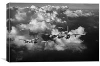 Mosquitos above clouds black and white version, Canvas Print