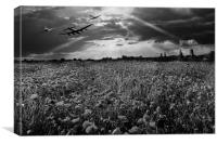The final sortie, black and white version, Canvas Print