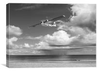 Consolidated PBY Catalina black and white version, Canvas Print