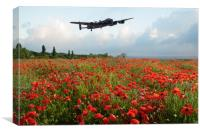 Poppies and Avro Lancaster , Canvas Print