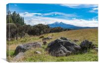 Mount Ruapehu view, Canvas Print
