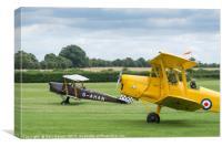 De Havilland Tiger Moths taxiing, Canvas Print