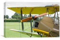 De Havilland Tiger Moth propeller, Canvas Print