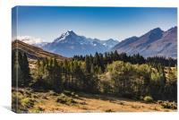 Mount Cook Aoraki view with trees, Canvas Print