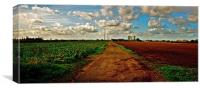 The Country Track, Canvas Print