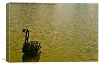 The Metal Swan, Canvas Print