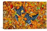 Autumn Boots, Canvas Print