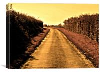 The Yellow Road, Canvas Print