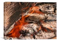 campfire, Canvas Print