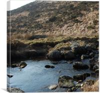 still waters on the moor, Canvas Print