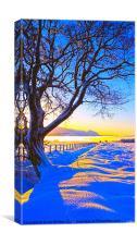 Winter Dawn, Canvas Print