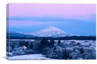 Ben Lomond Winter Scene