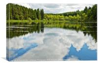 Woodland Loch Reflections 2, Canvas Print