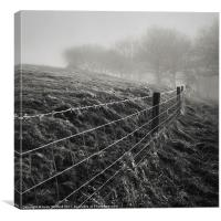 Barbed Wire Fence, Canvas Print