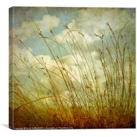 Spring Afternoon, Canvas Print