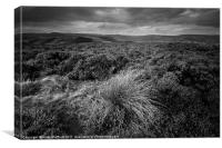 Wet Withens, Eyam Moor, Canvas Print