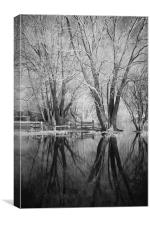 Bare Trees Reflected In Flood Water, Canvas Print